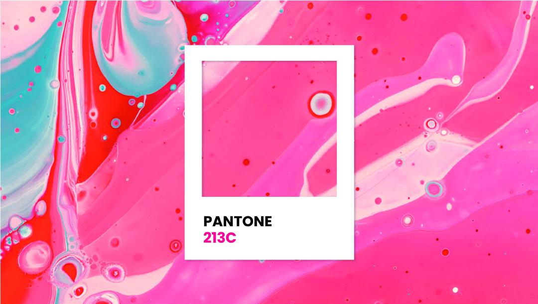Branding Color